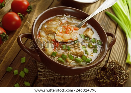 Soup with cabbage and meat. Russian traditional dish - stock photo