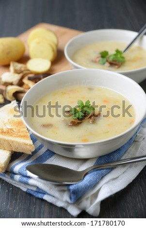 soup with wild mushrooms and potatoes - stock photo