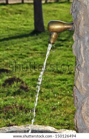 source of a water park coming to drink - stock photo