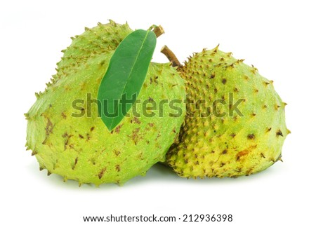 Soursop, Prickly Custard Apple. (Annona muricata L.) Treatment of cancer.