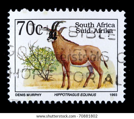 SOUTH AFRICA - CIRCA 1993: A stamp printed in South Africa shows image of Hippotragus Equinus, series, circa 1993