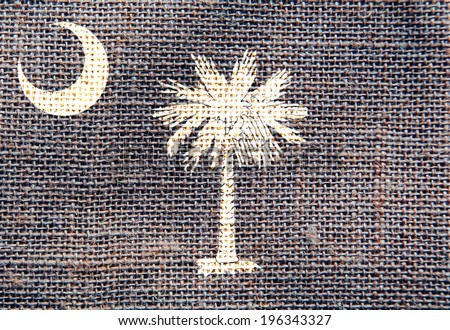 South Carolina Flag Sackcloth Texture