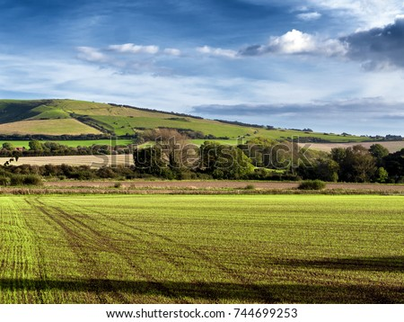 South Downs, England; landscape of South Downs, Sussex, early evening
