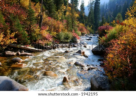 South fork of the Payette river, central Idaho - stock photo