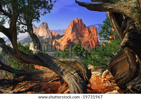 South Gateway Rock formation framed by twisted Juniper Trees at the Garden of the Gods Park in Colorado Springs, Colorado - stock photo