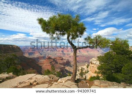 South Rim, Grand Canyon - stock photo