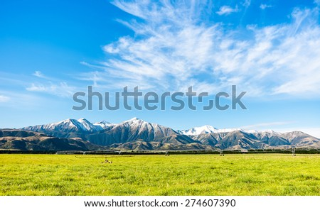 Southern Alps Landscape, New Zealand  - stock photo