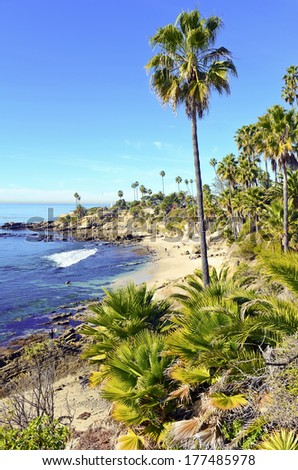 Southern California Beach Scene with Surf, Sun and Palm Trees - stock photo