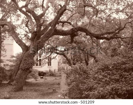 southern graveyard - stock photo