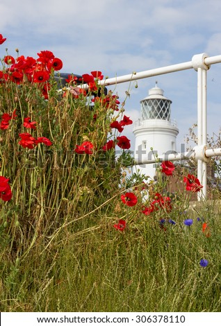 Southwold lighthouse and Poppies - stock photo