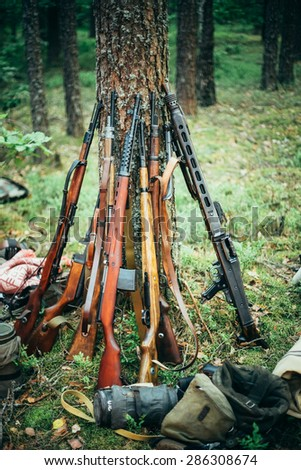 Soviet and German rifles of World War II machine-gun leaning against trunk of pine - stock photo