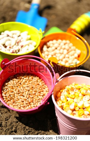 Sowing seeds  - stock photo