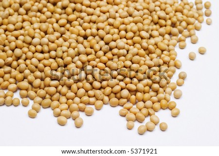 Soy bean isolated on white.