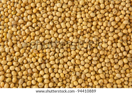 soy bean pattern as background - stock photo