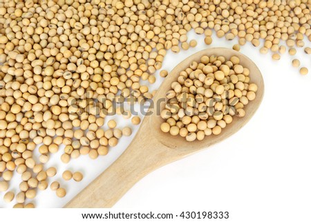 soy bean plant seed healthy vegetable food nature background