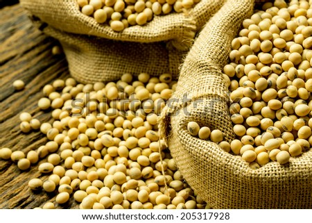 Soy beans in hessian bags. - stock photo