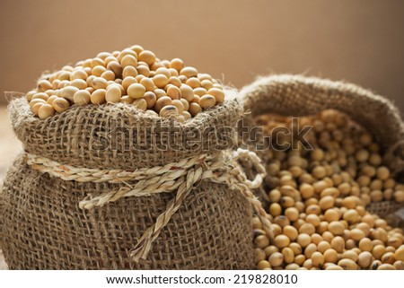 Soy beans in hessian bags - stock photo