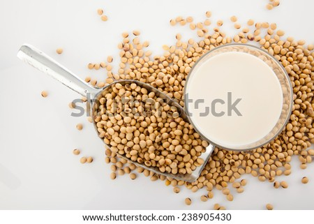Soy milk in glass with soybeans and  transfer scoop on white background