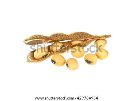 Soy pods isolated on white background - stock photo