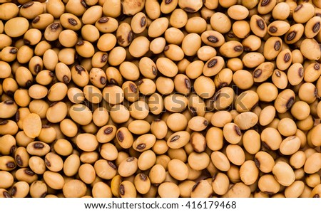 Soya bean organic, Closeup macro shot. - stock photo