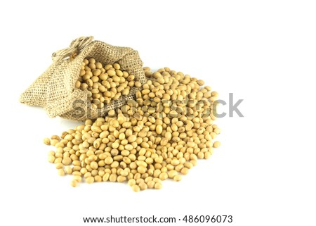soya beans pouring from a bag isolated on white background.