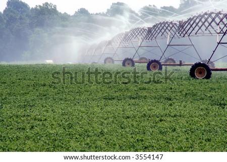 Soybean Field & Irrigation - stock photo