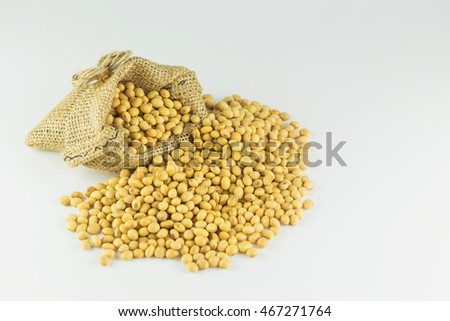 Soybean in a bag on a grey background.