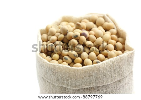 Soybean in sack isolated in white background - stock photo