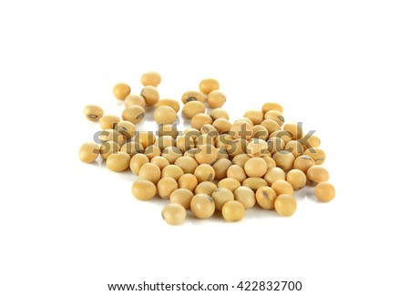 Soybean isolated on white background.