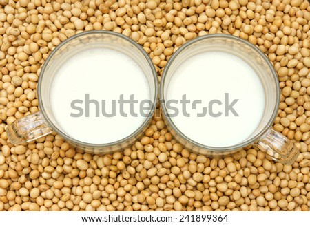 Soybean name Glycine max, Fabaceae family, rich protein, acid amino, vitamin, a nutrition product, to process soy milk, this soy milk supply collagen, estrogen for woman, a kind delicious beverage  - stock photo