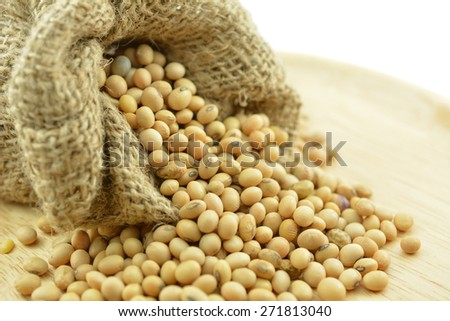 Soybean, Soy varies in growth and habit.