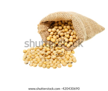 Soybeans in  bag isolated on white background. - stock photo