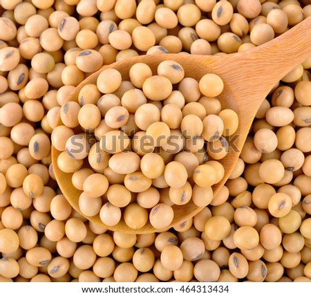 soybeans on wooden spoon
