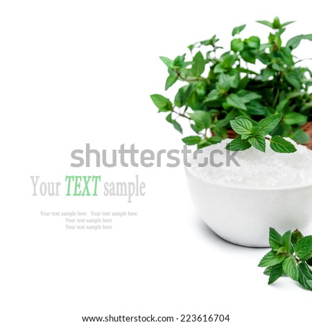 Spa and wellness setting with white sea salt and mint on white background. Manicure, relax and treatment therapy. Selective focus. Close up. - stock photo