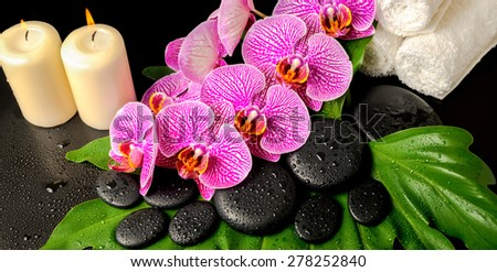 spa background of zen stones with dew, blooming twig stripped violet orchid (phalaenopsis ), stacked towel and candles on green leaf, panorama  - stock photo