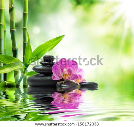 spa Background - purple orchids black stones and bamboo on water  - stock photo