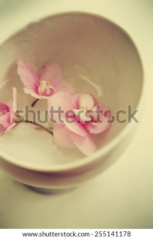 Spa background with flowers and water in vintage colors