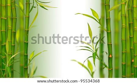 Spa bamboo background - stock photo