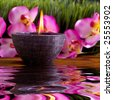 Spa candle, orchid flowers and green grass for alternative therapy - stock photo