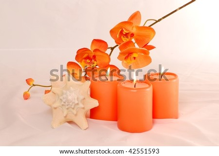 Spa Candles Orchide - stock photo