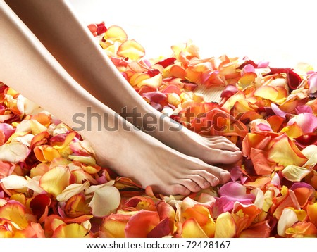 Spa compositions of sexy female legs and plenty of different petals - stock photo