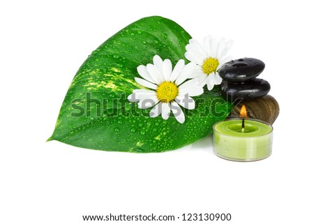 spa concept.flowers with green leaf isolated on white - stock photo