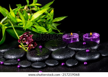 spa concept of flower orchid, phalaenopsis, zen basalt stones with drops, lilac candles, beads and bamboo, closeup   - stock photo