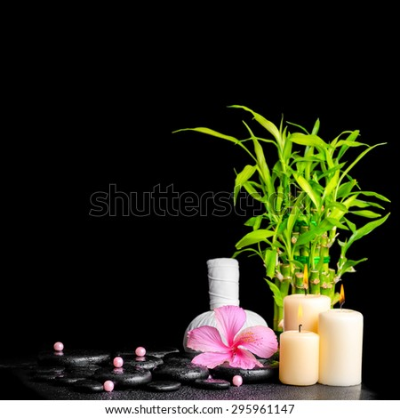 spa concept of hibiscus flower, bamboo, thai herbal compress ball, beads and candles on zen basalt stones with drops, closeup