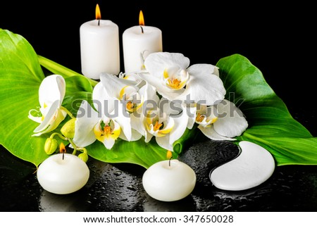 spa concept of orchid flower, phalaenopsis, leaf with dew, candles and Yin-Yang of stone texture on black background - stock photo