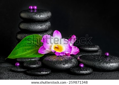 spa concept of purple orchid flower, green leaf, pyramid zen basalt stones with drops and beads - stock photo