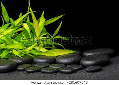 spa concept of twigs bamboo with dew on zen basalt stones, closeup