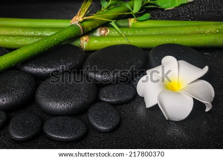 spa concept of zen basalt stones, white flower frangipani and natural bamboo with drops - stock photo