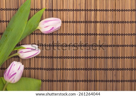 Spa concept with tulips with place for text - stock photo
