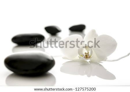 Spa concept with water overflowing  orchid flower and black zen stones.